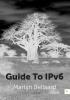 Martijn  Bellaard,Guide To IPv6