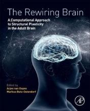 The Rewiring Brain