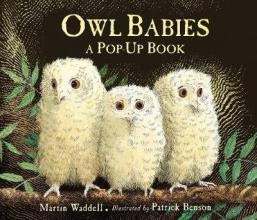 Waddell, Martin Owl Babies