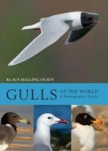 Klaus Malling Olsen Gulls of the World