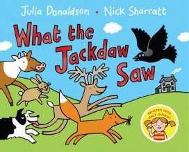 Donaldson, Julia What the Jackdaw Saw