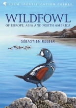 Sebastien Reeber Wildfowl of Europe, Asia and North America