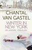 <b>Chantal van Gastel</b>,Winter in New York