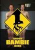 <b>Jochem  Stavenuiter, Paul vd Laan</b>,Het groot Bambieboek