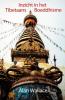 Alan Wallace,Inzicht in het Tibetaans boeddhisme
