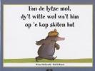 <b>Werner Holzwarth &amp; Wolf Erlbruch</b>,Fan de lytse mol, dy't witte wol wa't him op 'e kop skiten hat