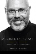 Shapiro, Rami M. Accidental Grace
