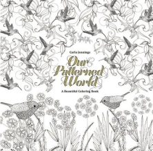 Our Patterned World