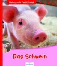 Tracqui, Valérie Das Schwein