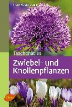 Berger, Frank M. von Taschenatlas Zwiebel- und Knollenpflanzen