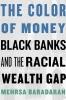 Baradaran, Mehrsa,The Color of Money