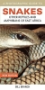 Branch, Bill,A Photographic Guide to Snakes, Other Reptiles and Amphibians of East Africa