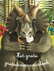 Cristina  Banfi, Cristina  Peraboni,Het grote grotedinosaurusboek + Het kleine kleinedinosaurusboek