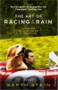 <b>Garth  Stein</b>,The Art of Racing in the Rain