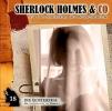 , Sherlock Holmes & Co 18: Die Geisterfrau ( Die Denkmaschine im Einsatz)