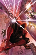 Slott, Dan Amazing Spider-Man Vol. 01