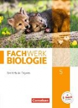 Dives, Ulrike,   Hampl, Udo,   Miehling, Andreas,   Niedermeier, Matthias Fachwerk Biologie 5. Jahrgangsstufe - Realschule Bayern - Schülerbuch