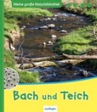 Zysk, Stefanie Meine große Naturbibliothek: Bach und Teich