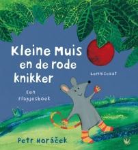Petr  Horacek Kleine muis en de rode knikker