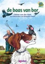 Fabien van der Ham , De baas van bor