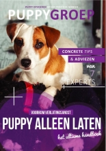 Robbin  Kleinpenning Het Ultieme Puppy Alleen Laten Handboek