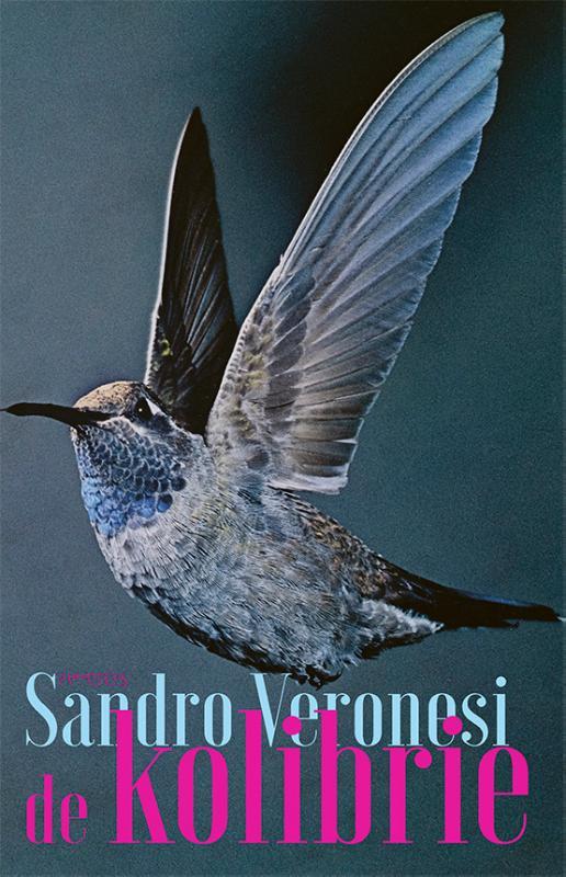 Sandro Veronesi,De kolibrie