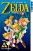 Himekawa, Akira,The Legend of Zelda 06 - Four Swords 01