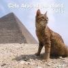 ,Cats Around the World 2018 Broschürenkalender