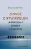 Hans van der Veen,Zinvol ontwikkelen