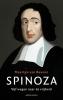 Maarten van Buuren,Spinoza