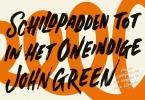 <b>John  Green</b>,Schildpadden tot in het oneindige