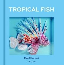 David,Hawcock Tropical Fish Pop-up