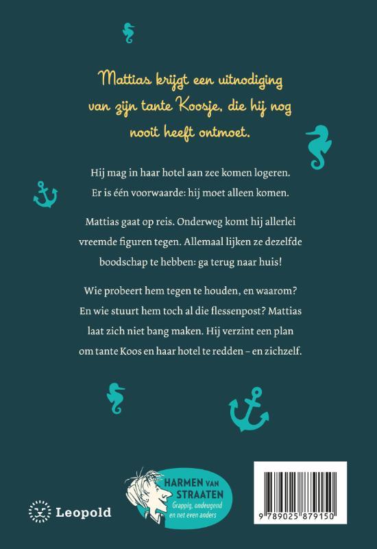 Harmen van Straaten,Het wonderbaarlijke scheepsjournaal van Mattias Spijker