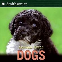 Simon, Seymour Dogs