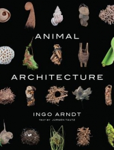 Ingo Arndt Animal Architecture