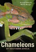 Tolley, Krystal,   Burger, Marius Chameleons of Southern Africa