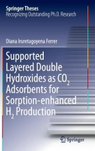 Iruretagoyena Ferrer, Diana Supported Layered Double Hydroxides as CO2 Adsorbents for Sorption-enhanced H2 production