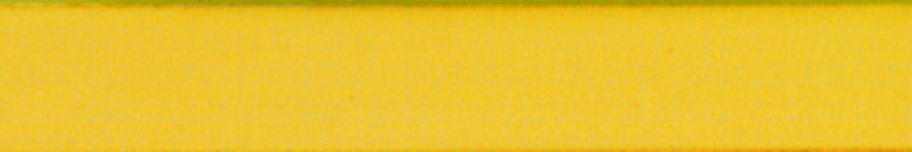 , Magneetstrip Legamaster 10x300mm geel