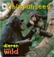 Patricia Kendell , Chimpansees