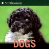 Simon, Seymour,Dogs