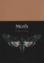Matthew Gandy Moth
