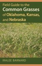 Iralee Barnard Field Guide to the Common Grasses of Oklahoma, Kansas, and Nebraska