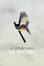 McElroy, Gil Last Scattering Surfaces