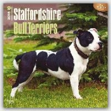 Staffordshire Bull Terriers 2016 Wall