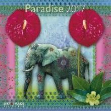 Paradise 2017 Broschrenkalender