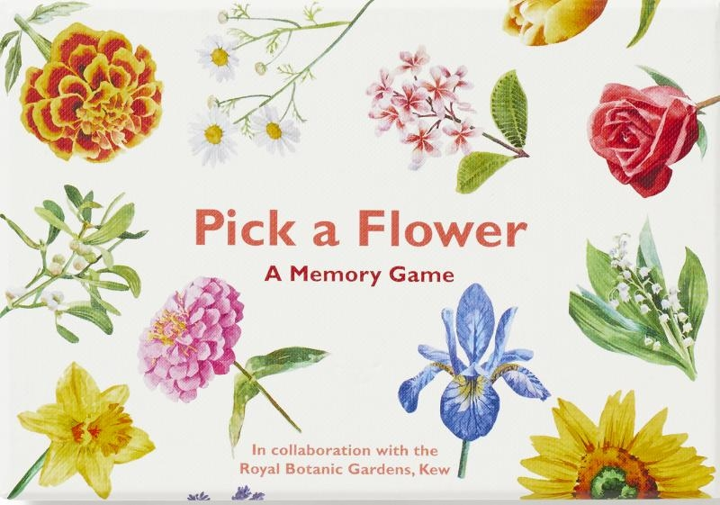 Day, Anna,Pick a Flower