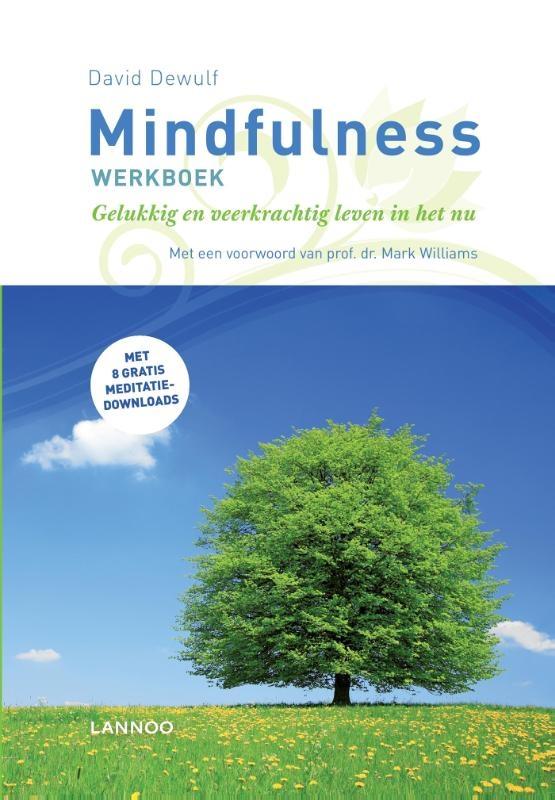 David Dewulf,Mindfulness werkboek
