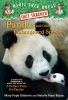 Osborne, Mary Pope,   Boyce, Natalie Pope,Pandas and Other Endangered Species
