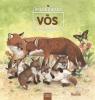 Renne,Wilde dieren in de natuur. De vos