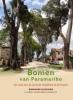 Chantal van den Bergh-Lodeweyckx Dominiek  Plouvier,Bomen van Paramaribo